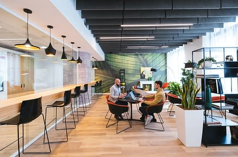 censo-coworking